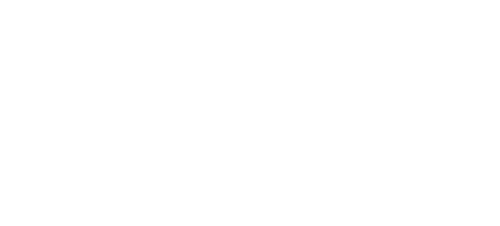 Travel in Twos